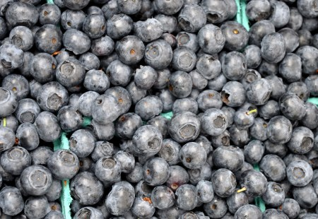 Blueberry pic from Interbay Farmer's Market